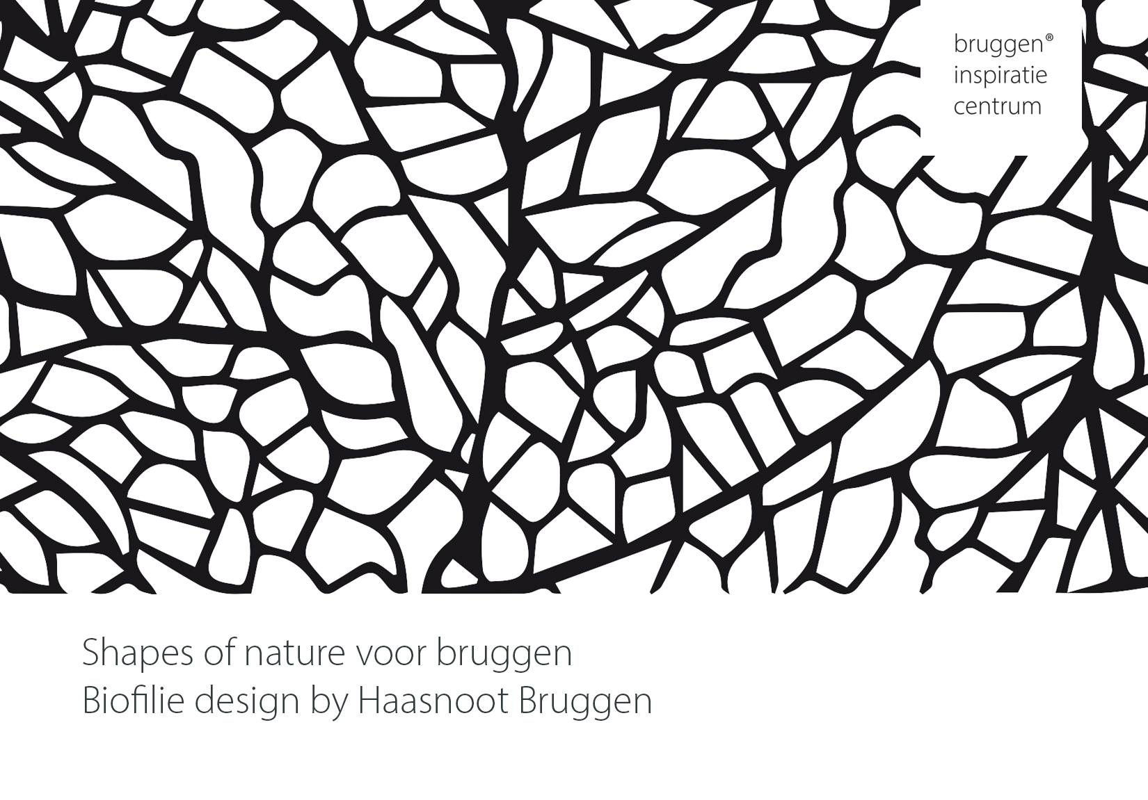 Shapes_of_nature_Haasnoot_bruggen
